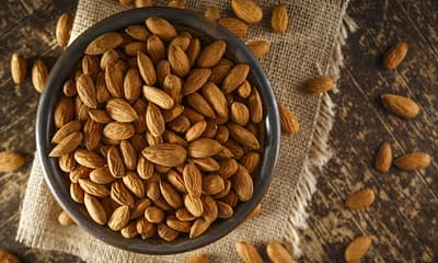 Almond - Be the Change the Earth Needs