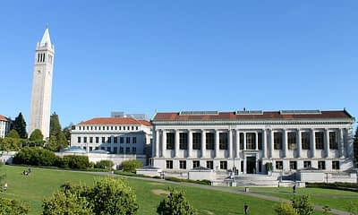 university-of-california-berkeley-issues stablecoin study