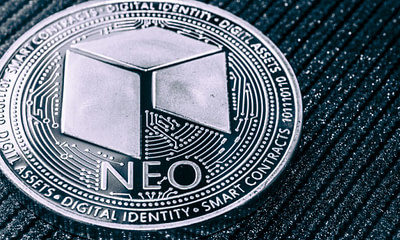 Investing in NEO - Everything You Need to Know