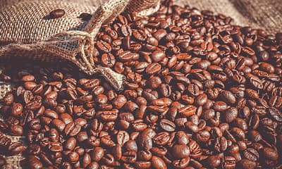 AI Could Help Keep Coffee Affordable and Accessible In The Face Of Climate Change