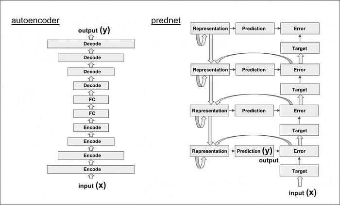 The simple, linear architecture of the autoencoder, and the more labyrinthine and recursive network of PredNet.