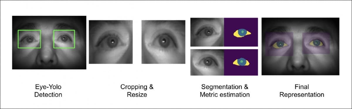 You Only Look Once (YOLO) individuates the subject's eyes, after which the framework separates the instances and performs segmentation to break the eye image down into its constituent parts. Source: https://arxiv.org/pdf/2106.15828.pdf