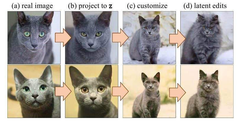 Here, a real image has been used as input to the GAN (cat model), which edits the input to match submitted sketches. This allows image editing via sketching.