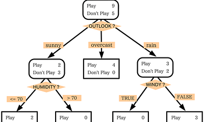 What is a Decision Tree?